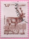 Stamps : Asia : Afghanistan :  Cervus elephus
