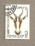 Stamps Russia -  120 Aniv. del Zoo de Moscú