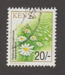 Sellos de Africa - Kenya -  Pyrethrum chrysanthemum