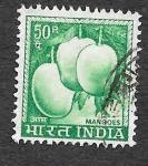 de Asia - India -  416 - Mango