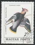 Stamps Europe - Hungary -  2986 - Bombycilla garrulus