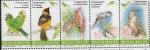 Sellos del Mundo : America : México :  Conservemos las aves canoras y de ornato