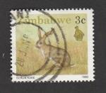 Sellos de Africa - Zimbabwe -  Liebre