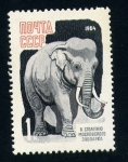 Stamps Europe - Russia -  Elefante asiatico
