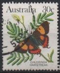Sellos del Mundo : Oceania : Australia : CHLORINDA  HAIRSTREAK