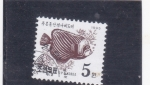 Stamps North Korea -  Emperor Angelfish