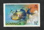 Stamps : America : Dominica :  414 - Pez balistes bursa