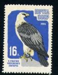 Stamps Europe - Russia -  Aguila Calva