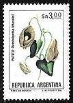 Sellos de America - Argentina -  Aristolochia littoralis (patito)