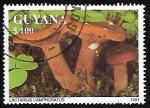 Sellos del Mundo : America : Guyana : Setas - Lactarius Camphoratus