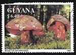 Sellos del Mundo : America : Guyana : Setas -Boletus satanoides