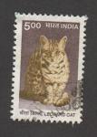 Stamps India -  Leopardo