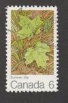 Stamps Canada -  Verano