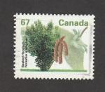 Sellos de America - Canadá -  Avellano