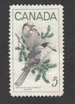 Stamps Canada -  Ave Perisoreus canadensis