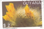 Sellos del Mundo : America : Guyana : CAPTUS- SULCOREBUTIA DENSISETA