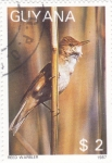 Stamps : America : Guyana :  AVE-REED WARBLER