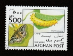 Stamps Afghanistan -  Zerynthia polyxema