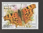 Stamps Asia - Afghanistan -  Polygonia album