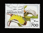 Stamps Afghanistan -  Cerura vinula
