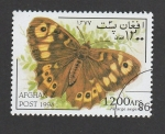 Stamps Asia - Afghanistan -  Pararge aegeria
