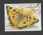 Stamps Asia - Afghanistan -  Nymphalis polychloros