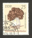 Stamps : Europe : Germany :  1617 - Champiñon, gyromitra esculenta