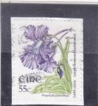 Stamps : Europe : Ireland :  FLORES- PINGUICULA GRANDIFLORA