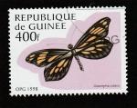 Stamps Guinea -  Dismorphia cubana