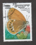 Stamps Asia - Cambodia -  Coenonympha hero