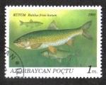 Stamps Asia - Azerbaijan -  Peces, Caspian Kutum (Rutilus frisii kutum)