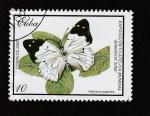 Stamps : America : Cuba :  Helcyra superba