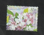 Stamps Europe - Russia -  7914 - Flores