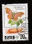 Stamps North Korea -  Antheraea pernyi