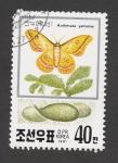 Sellos de Asia - Corea del norte -  Anteraea yamamai