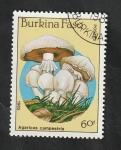 Stamps : Africa : Burkina_Faso :  679 - Champiñón, Agaricus campestris