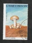 Stamps São Tomé and Príncipe -  901 - Champiñón, Psalliota bispora