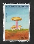 Stamps : Africa : São_Tomé_and_Príncipe :  899 - Champiñón, Rhodopaxillus nudus