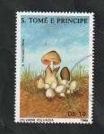 Stamps : Africa : São_Tomé_and_Príncipe :  900 - Champiñón, Volvaria volvacea