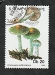 Stamps : Africa : São_Tomé_and_Príncipe :  988 - Champiñón, Stropharia aeruginosa