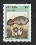 Stamps Vietnam -  850 - Champiñón, Tricholoma terreum