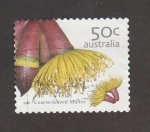Stamps Australia -  Eucalyptua oleosa