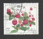 Sellos de Europa - Serbia -  Plantas de fresas