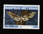 Sellos de America - Nicaragua -  Agrius cingulata