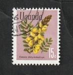 Stamps : Africa : Uganda :  84 - Flor casia didymobotrya