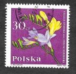Sellos del Mundo : Europa : Polonia :  1280 - Fresia
