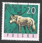 Sellos de Europa - Polonia -  1369 - Lobo