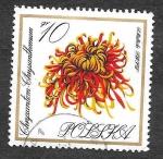 Stamps Poland -  1430 - Crisantemo
