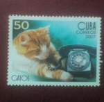 Stamps Cuba -  Gatos
