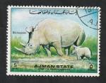 de Asia - Emiratos Árabes Unidos -  Ajman - Rinocerontes